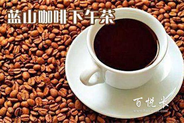 蓝山咖啡、炭烧还是摩卡咖啡?咖啡,适合你的才最好!